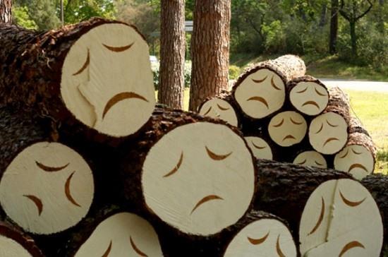 Poor little trees art installation