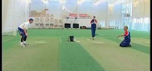 Practice proper cricket fielding drills