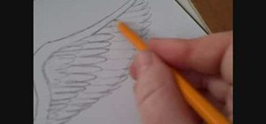 Draw angel wings with pencil