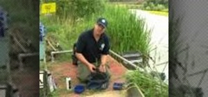 Mix ground bait properly and catch more fish