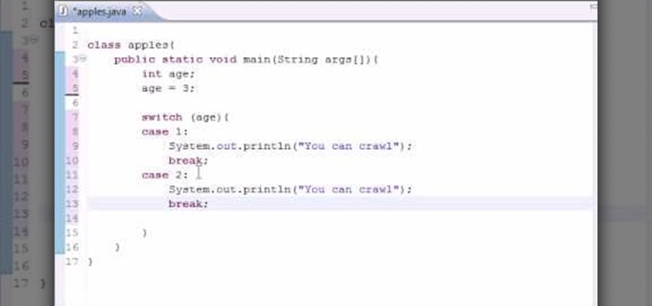 How To Use The Switch Statement For Java Programming