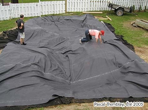 How To Build A Backyard Pond Gardening