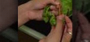 Crochet a crinkle scrunchie