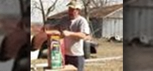 Use lawn care garden sprayers