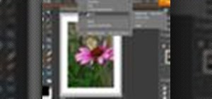 Add borders to images in Photoshop Elements