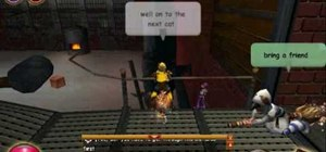 Find all of the cats in Wizard101 (11/11/09)