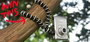 Your Best Bird's Eye View Photo by October 3rd. WIN: Flexible Gorillapod Tripod