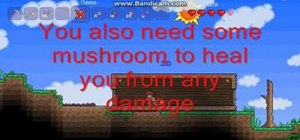 Make your first shelter in Terraria