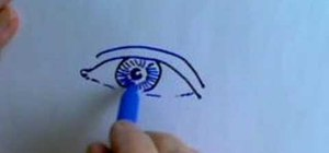 Draw a human eye from straight-on perspective