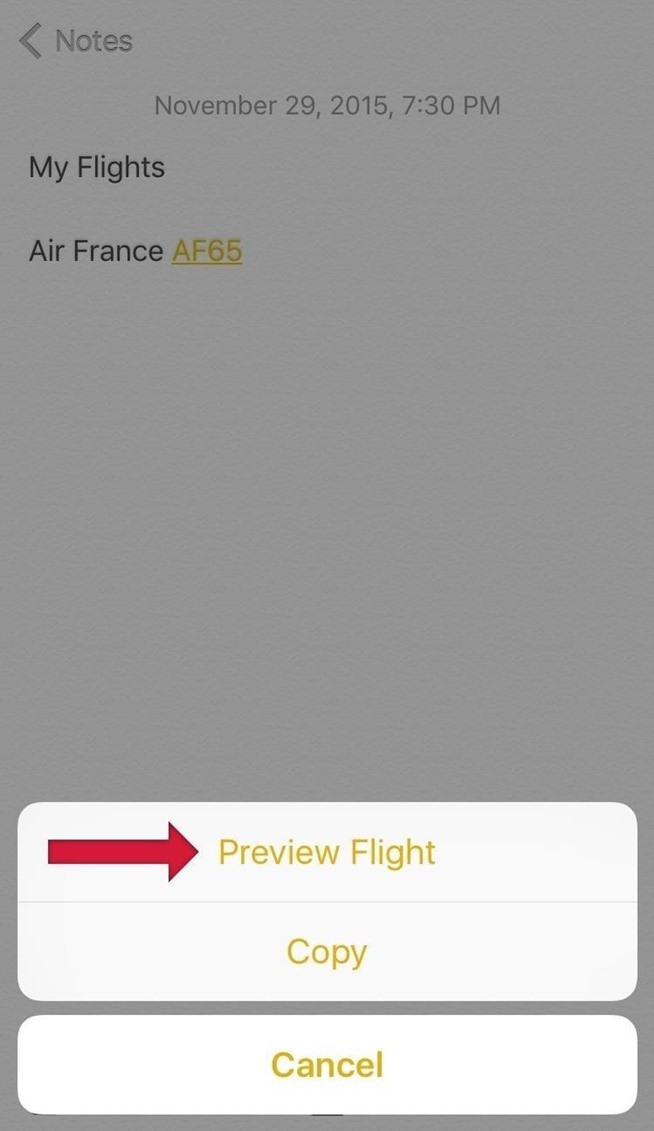 Natively Check Flight Information on Your iPad, iPhone, & Mac