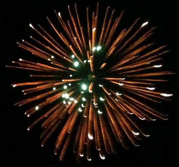 Fireworks Photography Challenge: In Orbit 2011