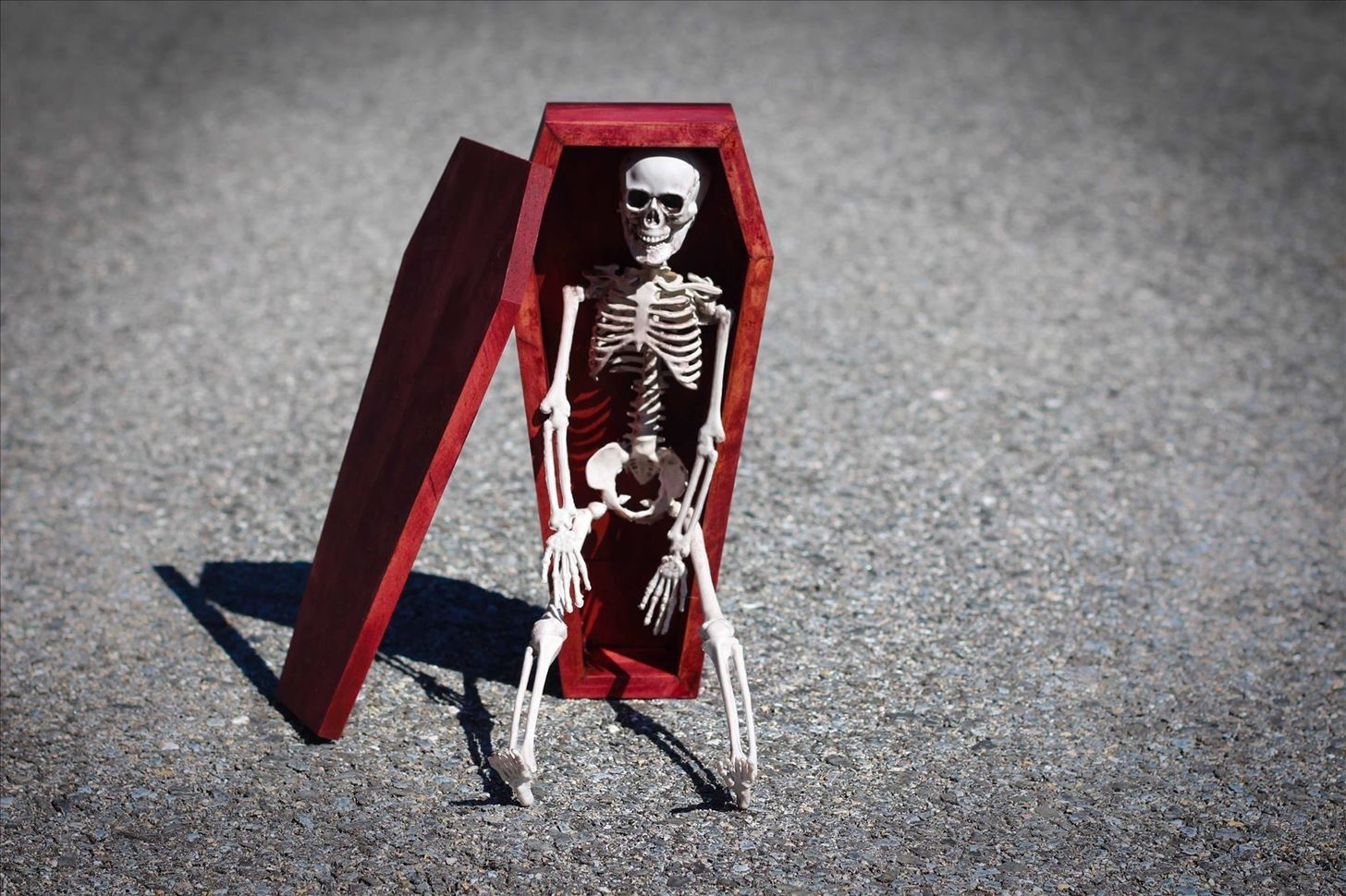How to Build a Mini Coffin