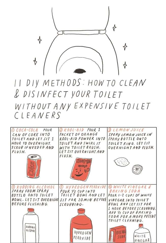 how to clean your toliet with wd4