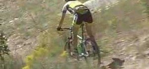 Go downhill on a mountain bike