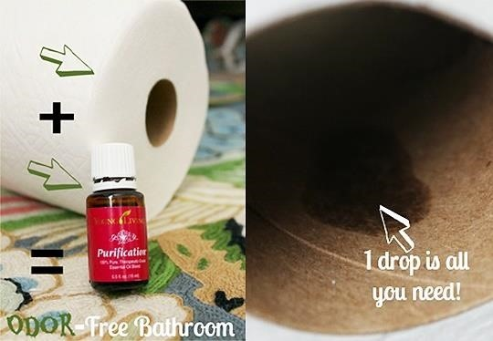 Add Essential Oil To Toilet Paper To Eliminate Bathroom Odors - Bathroom odor