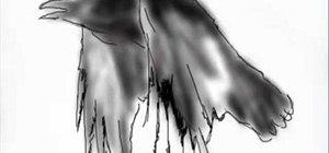 Draw a raven