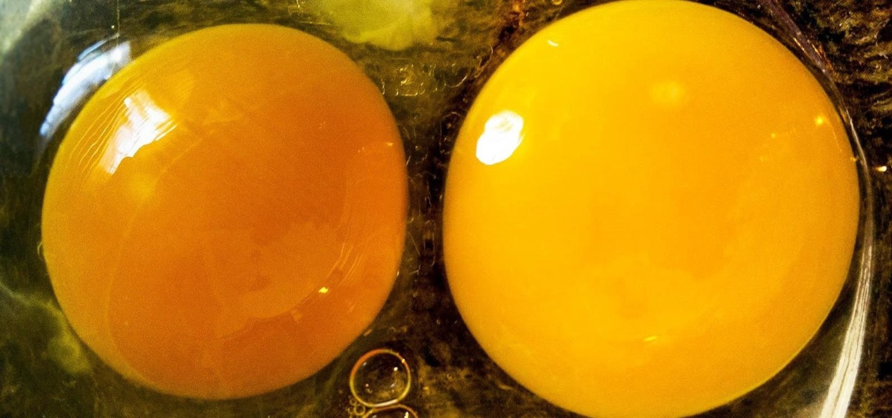 Tell if Your 'Expired' Eggs Are Still Good to Eat