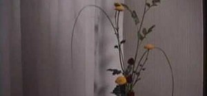 Make ikebana flower arrangements