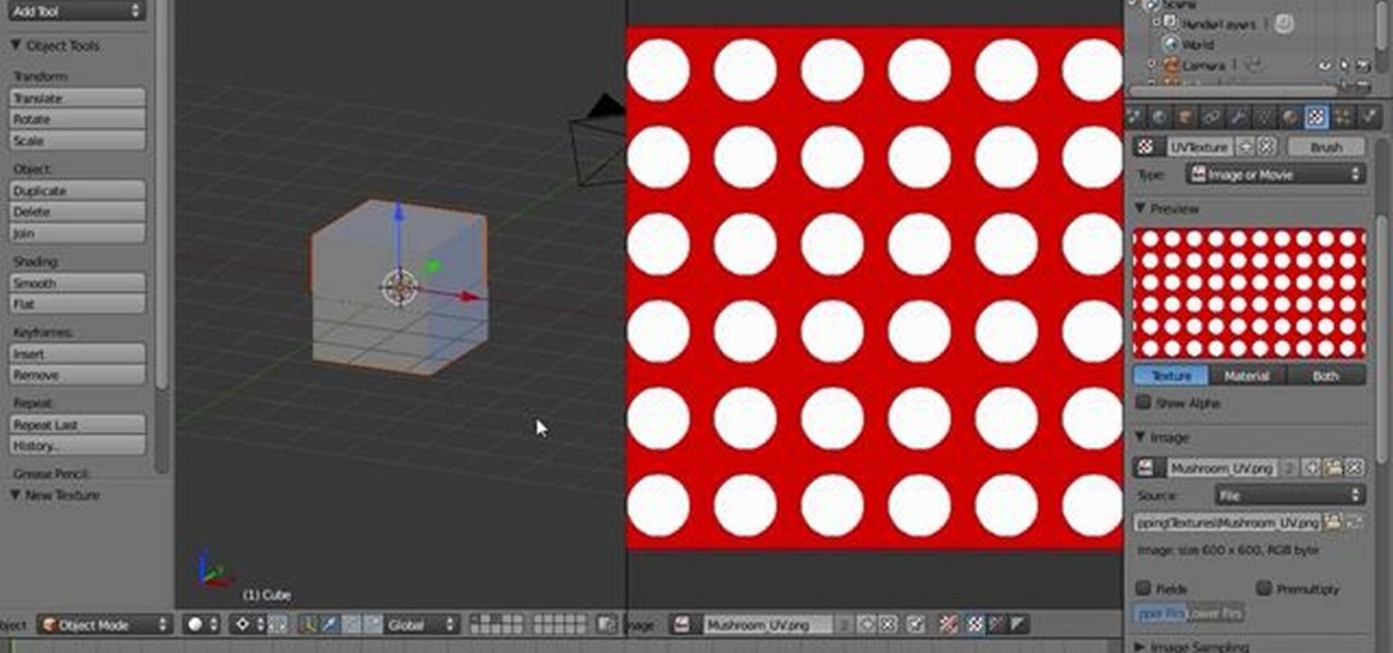 How to Unwrap a mesh in Blender 2.5 « Software Tips