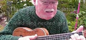 "Play ""The Unicorn Song"" by the Irish Rovers on ukulele"
