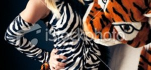 Tiger Eating a Zebra (SFW... sort of)