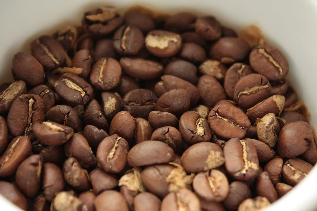 Coffee Beans Still Fresh? Here's How to Check