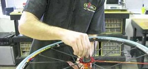 Service a Mavic Freehub on your bicycle wheel