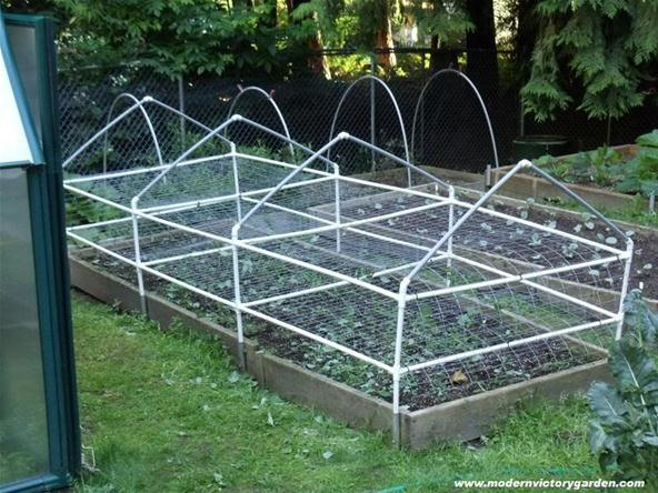 The Modern Victory Garden + Vermiculture Tips