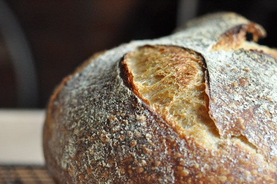 Tartine Bread: The Beauty and Artistry of Bread Making