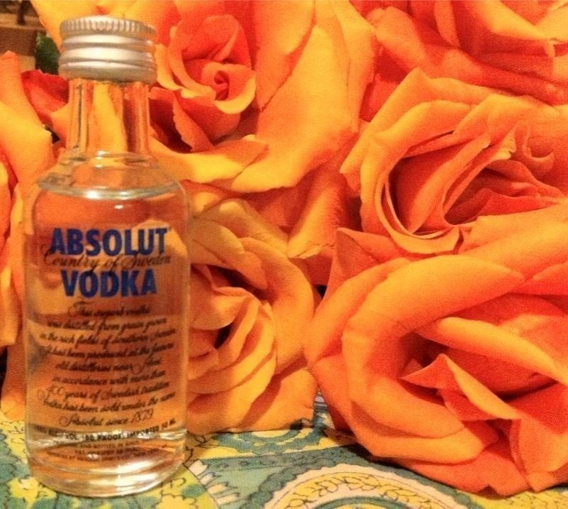 12 Things Cheap Vodka Is Good for Besides the Obvious