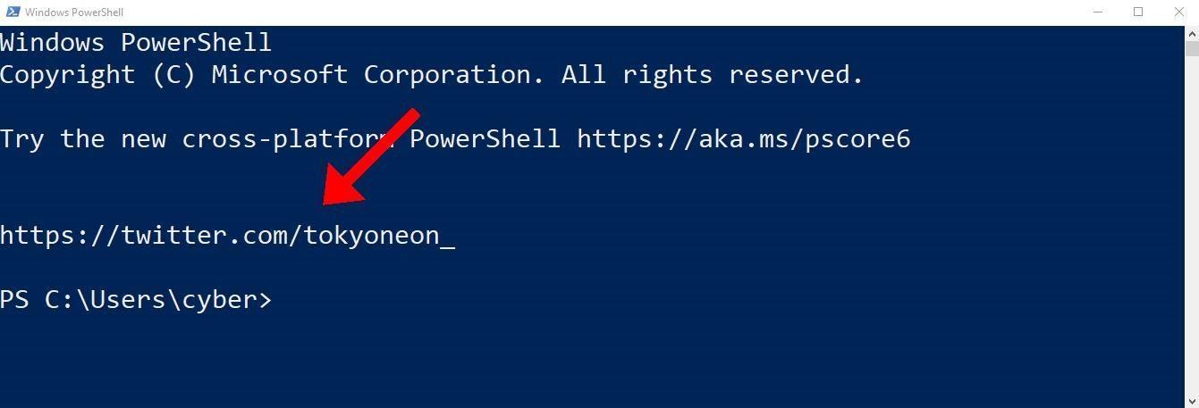 Hacking Windows 10: How to Evade Detection of Netstat & Tasklist