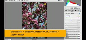 Create and export images for the Web in Photoshop CS5
