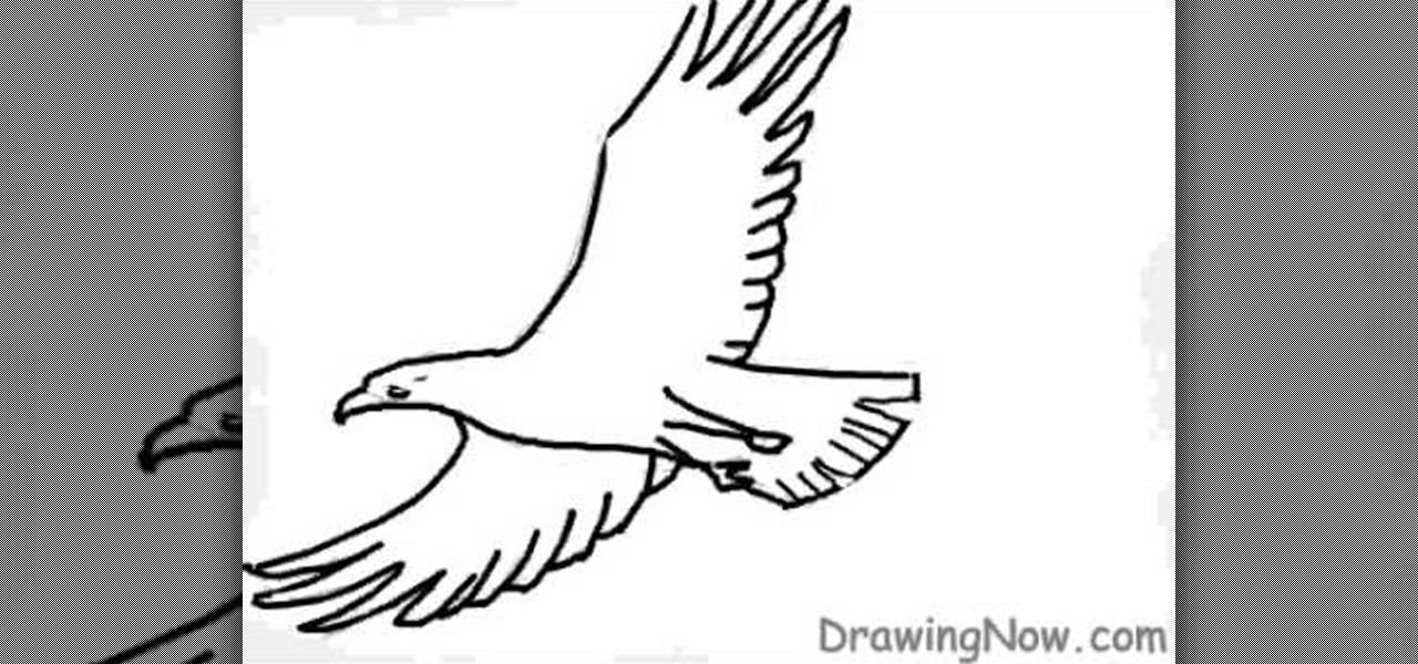 How to Draw a basic eagle « Drawing & Illustration :: WonderHowTo