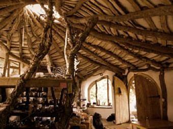 Dream Home...ummm...for Trolls and Treehuggers