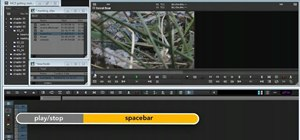 Get started editing video in Avid Media Composer 5