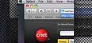 Use a screensaver as a desktop background on a Mac OS X computer