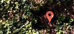 These Google Maps Birdhouses Make It Easy for Birds to Find Their Way Home