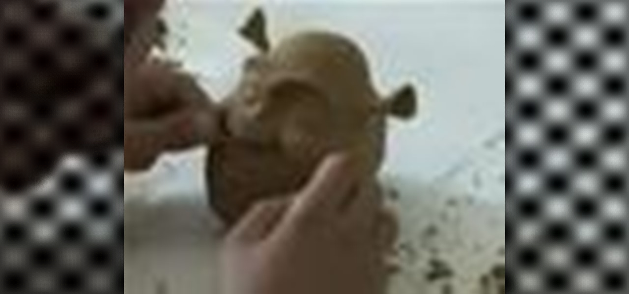 how to make shrek out of clay sculpture wonderhowto