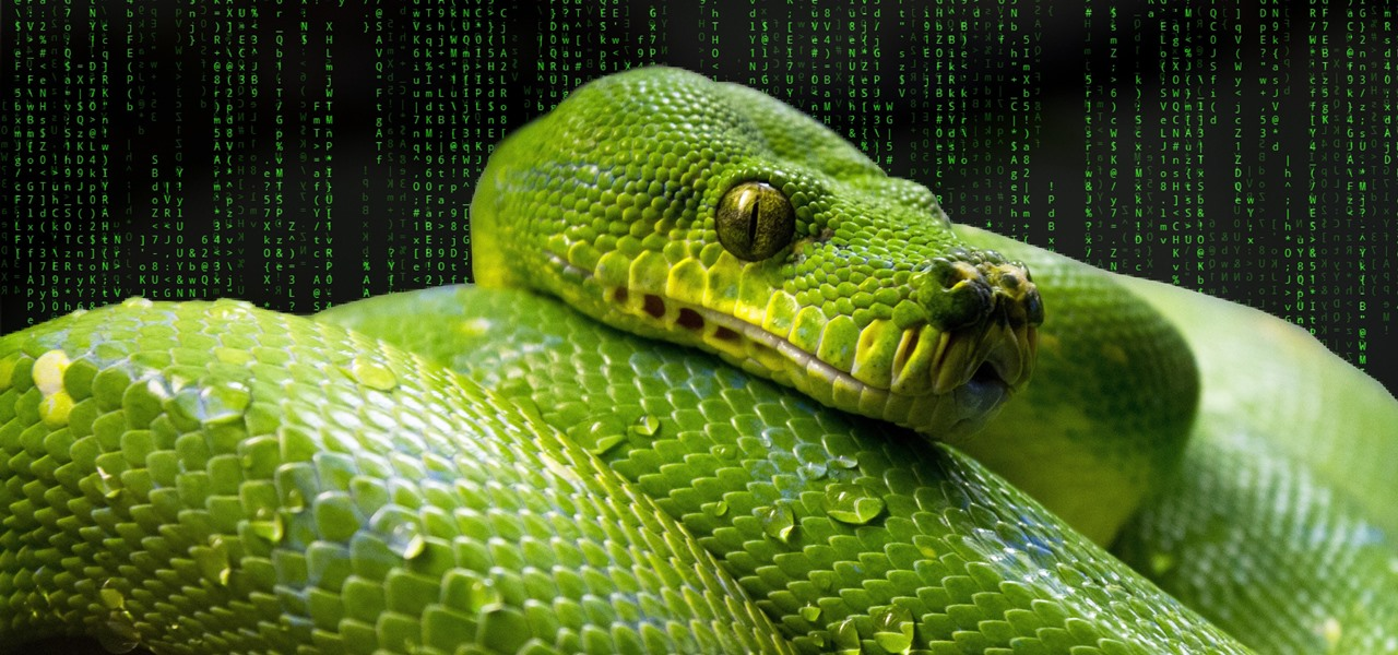 How to Use the Shodan API with Python to Automate Scans for Vulnerable Devices