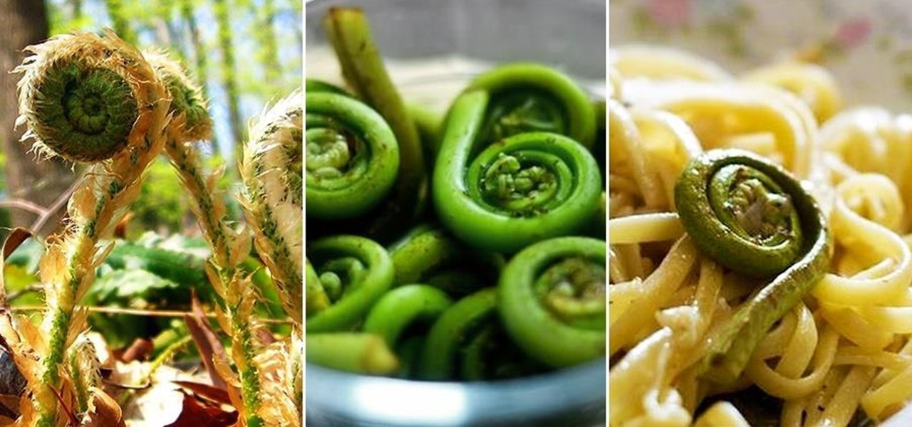 The Fantastical, Flavorful Fiddlehead Fern