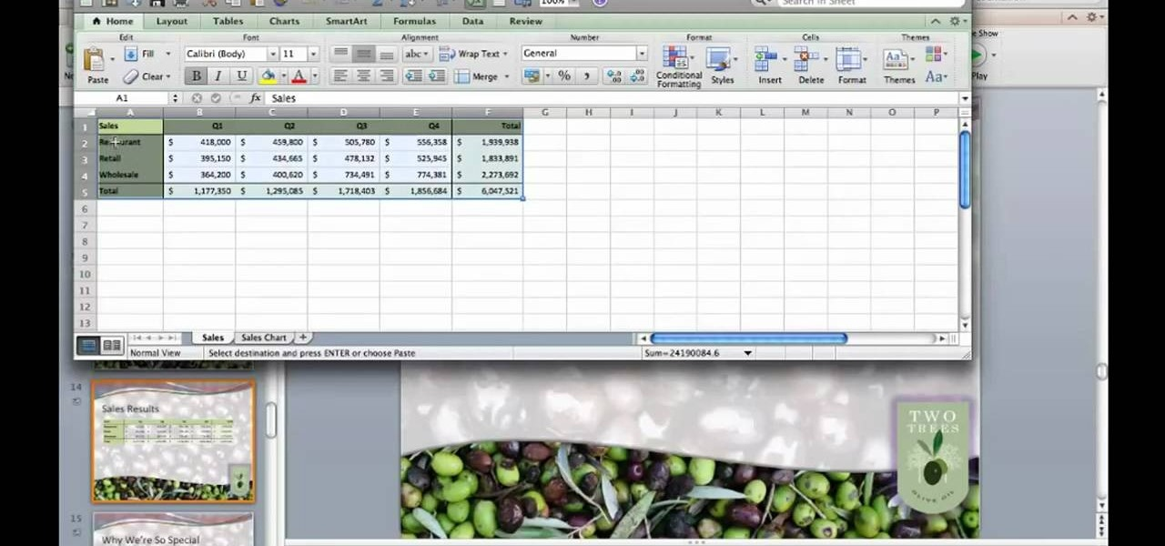 how to make a table on excel mac