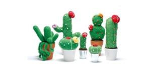 Amazing Crochet Cactus and other things