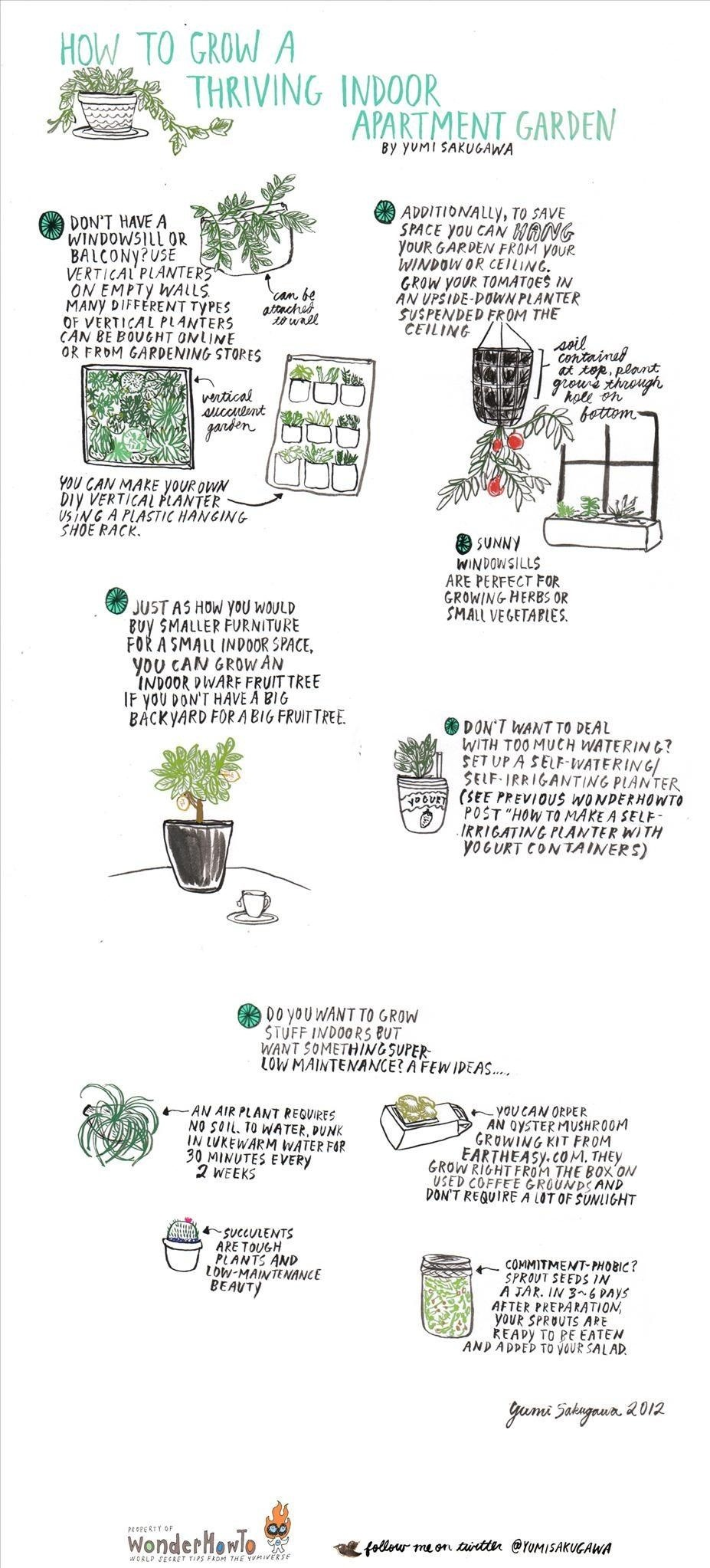 How to grow a thriving indoor apartment garden the secret click on image to enlarge workwithnaturefo
