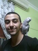 Waseem Alghosien
