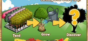 FarmVille Orchards and Tree Mastery