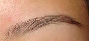 Shape and groom your eyebrows
