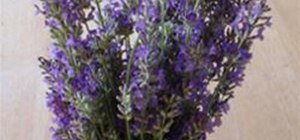 Hang Dry Herbs
