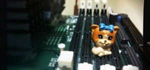 Cyber Kitty Amnesia...