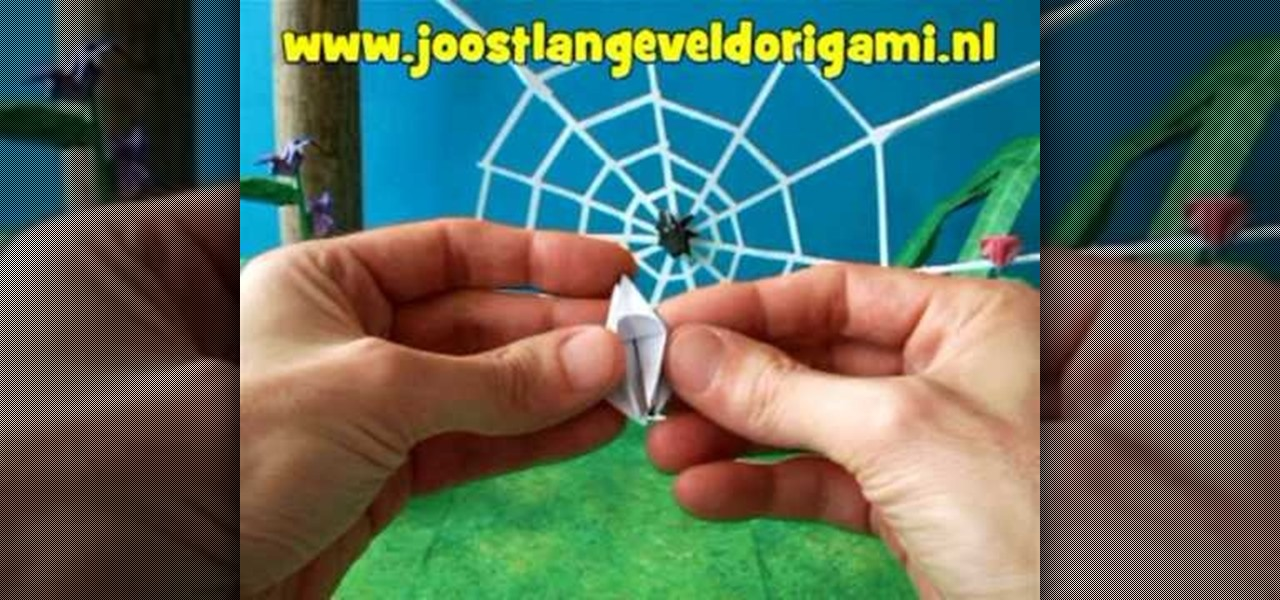 Kirikomi Origami Spider - YouTube | 600x1280