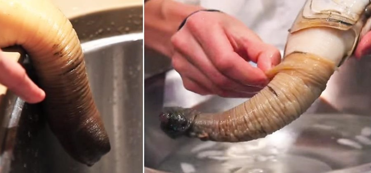 The Geoduck, a Mollusk as Weird as It Is Phallic